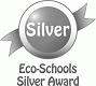 Eco-School-Silver-89-80